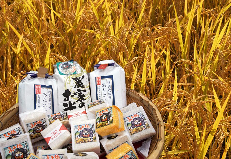 Takachiho Rice
