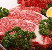 Takachiho beef